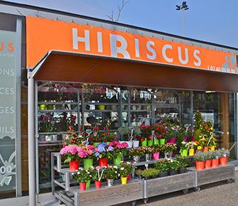 Je contacte mon magasin hibiscus fleurs livraison sur for Livraison fleurs rennes